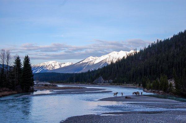 Echtes Kanada-Erlebnis an der Thompson Rivers University garantiert