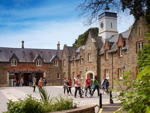 An der beliebten Swansea University studieren Sie zwischen grünen Hügeln direkt am Meer.