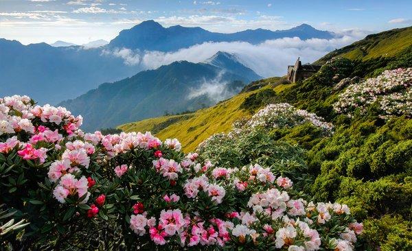 Taiwan erleben im Auslandssemester