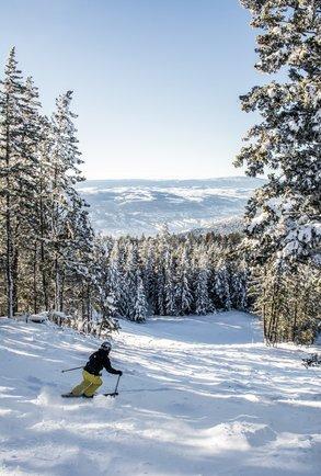 Kamloops - ein Paradies für Wintersportler