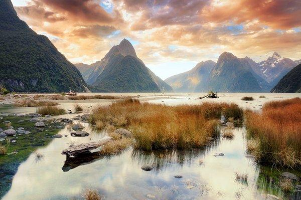 Nutzen Sie Auslands-BAföG um ein Auslandssemester in Neuseeland zu erleben.