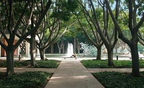 Studieren im sonnigen Kalifornien: Die California State University Long Beach.
