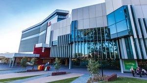 Auslandssemester an der Gold Coast in Australien