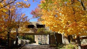 Studium in den USA an der State University of New York, Old Westbury