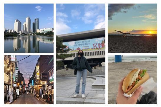 Auslandssemester in Zeiten von Corona: Mit Maske durch Südkorea oder lieber Fischbrötchen-Pause am Ostseestrand?